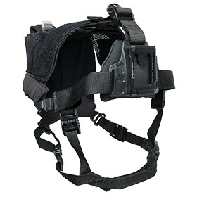 Wilcox Skull Lock-Lite Night Vision Head Mount